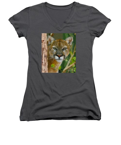 Florida Panther Women's V-Neck T-Shirt (Junior Cut) by Larry Nieland