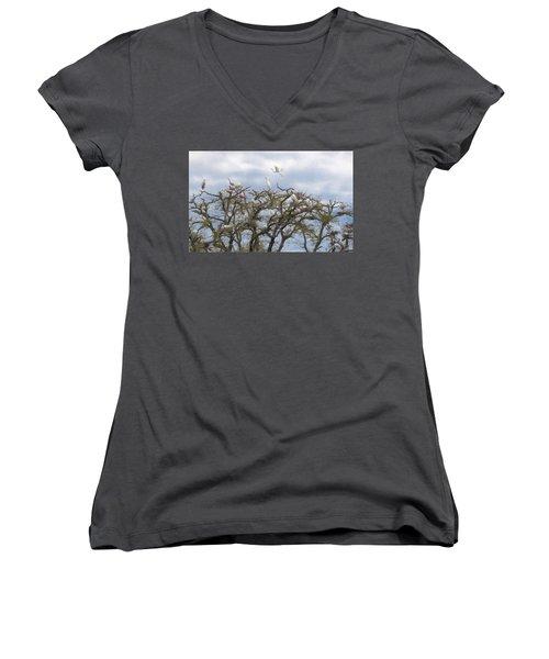 Florida Rookery Women's V-Neck T-Shirt (Junior Cut) by Kelly Marquardt