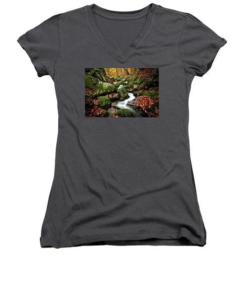 Women's V-Neck T-Shirt (Junior Cut) featuring the photograph Flow by Jorge Maia