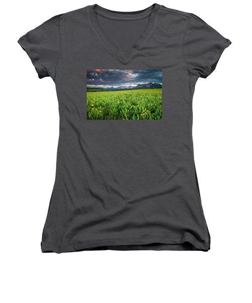 Flower Field And Sneffels Range Women's V-Neck