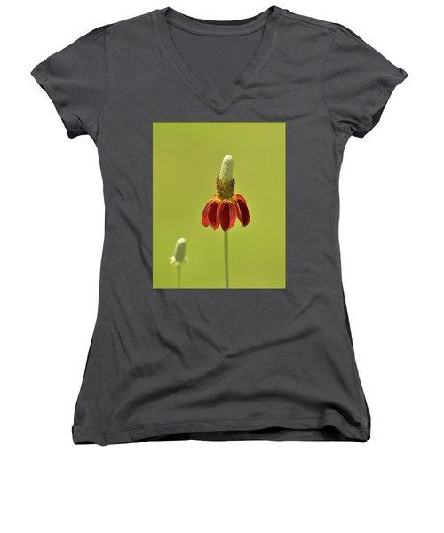 Flower  Women's V-Neck T-Shirt (Junior Cut) by Nancy Landry