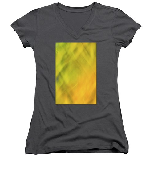 Flower Of Fire 1 Women's V-Neck