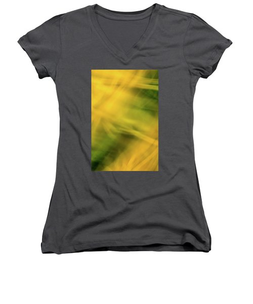 Flower Of Fire 5 Women's V-Neck T-Shirt