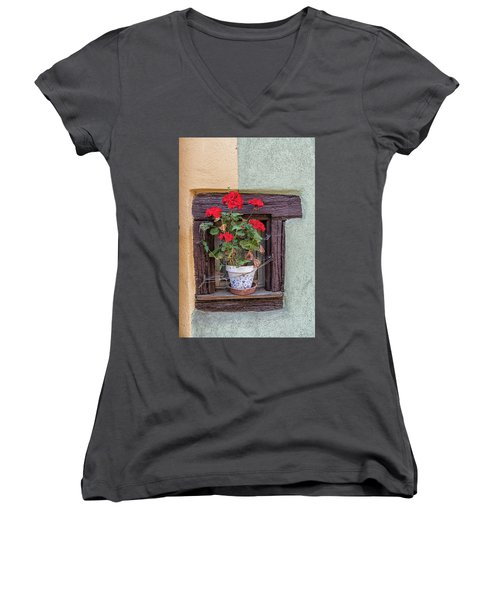 Flower Still Life Women's V-Neck T-Shirt (Junior Cut) by Alan Toepfer