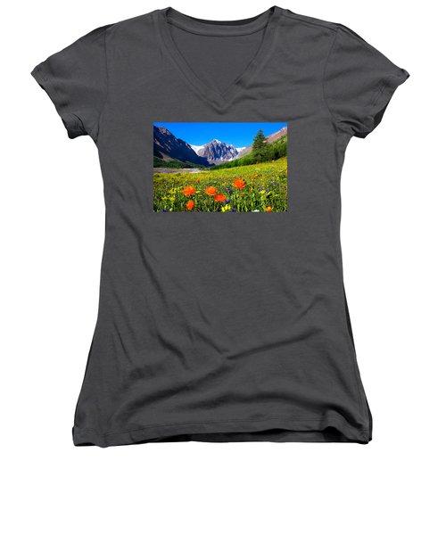 Flowering Valley. Mountain Karatash Women's V-Neck