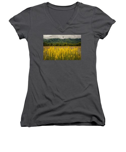 Women's V-Neck T-Shirt (Junior Cut) featuring the photograph Flowers In Cades Cove by Tyson Smith