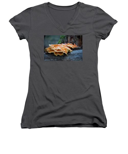 Flowing Fungus Women's V-Neck