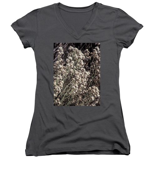 Fluff And Seeds Women's V-Neck (Athletic Fit)