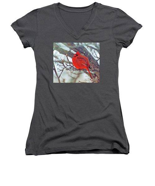 Fluffed Up Male Cardinal Women's V-Neck