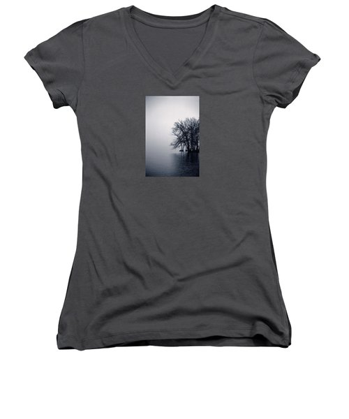 Fog Day Afternoon Women's V-Neck (Athletic Fit)
