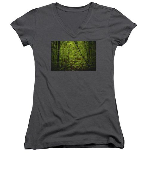 Women's V-Neck T-Shirt (Junior Cut) featuring the photograph Forest Beckons by Shane Holsclaw