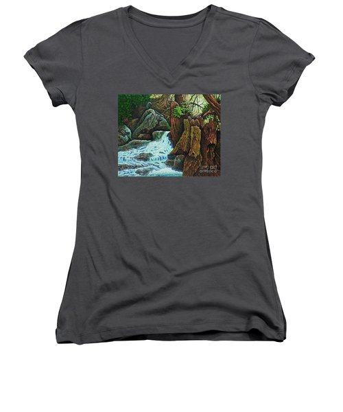 Women's V-Neck T-Shirt (Junior Cut) featuring the painting Forest Brook IIi by Michael Frank