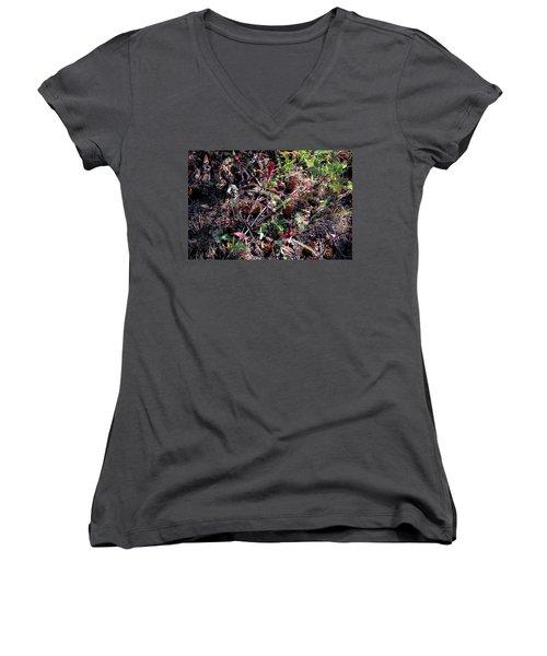 Forest Floor Women's V-Neck T-Shirt