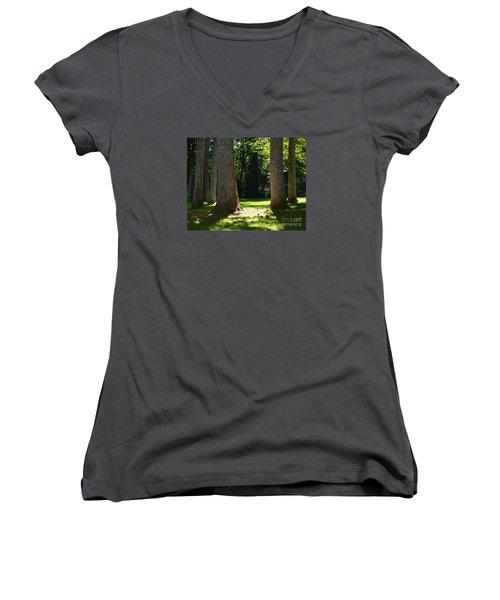 Forest Glen Women's V-Neck T-Shirt (Junior Cut) by Lew Davis