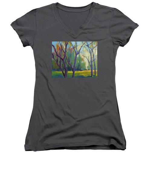 Forest In Spring Women's V-Neck