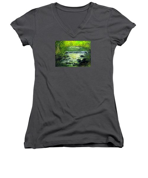 Forest Stream Women's V-Neck T-Shirt