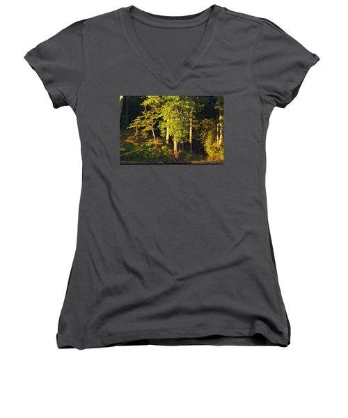 Forests Edge Women's V-Neck