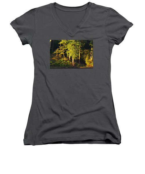 Forests Edge Women's V-Neck T-Shirt