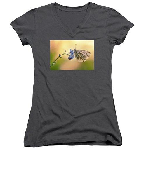 Forget Me Not Women's V-Neck T-Shirt (Junior Cut) by Jaroslaw Blaminsky