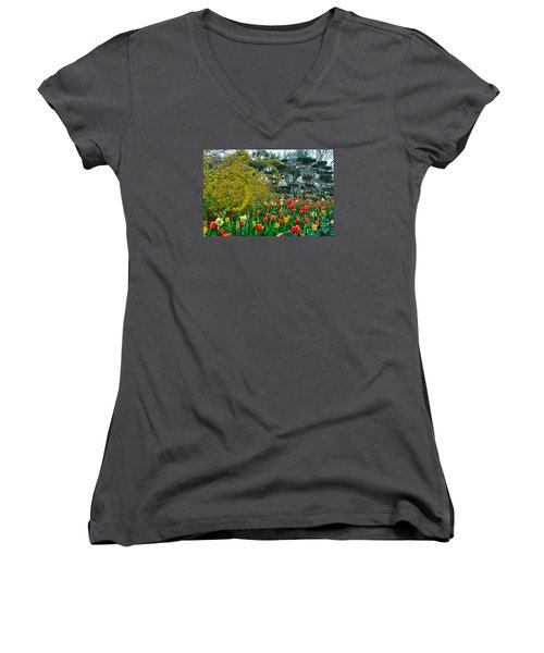 Women's V-Neck T-Shirt (Junior Cut) featuring the photograph Forsythia Tulips And Daffadils by Diana Mary Sharpton