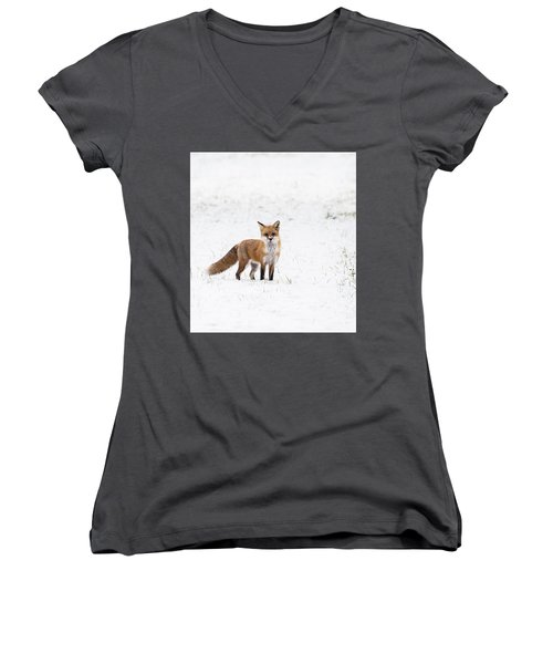 Fox 1 Women's V-Neck
