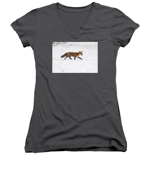 Fox 3 Women's V-Neck