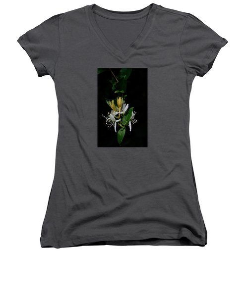 Fragrant Honeysuckle Women's V-Neck T-Shirt (Junior Cut) by Karen Harrison