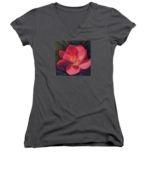 Freesia Dawn Women's V-Neck T-Shirt