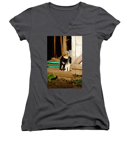 Women's V-Neck T-Shirt (Junior Cut) featuring the photograph Friends by Steven Clipperton