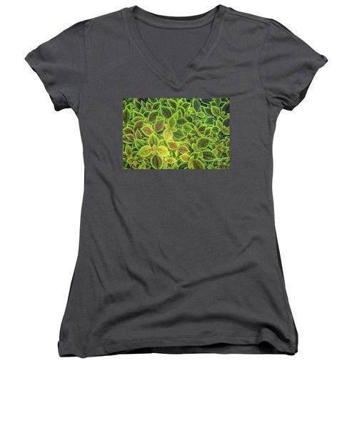 Friendship Plant Women's V-Neck T-Shirt