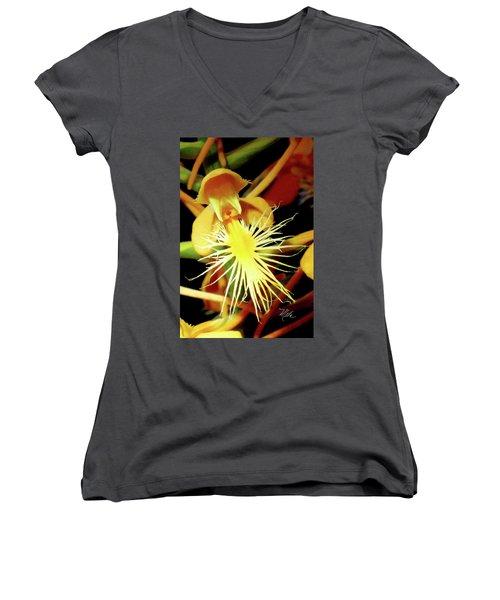Fringed Yellow Orchid Women's V-Neck T-Shirt (Junior Cut) by Meta Gatschenberger