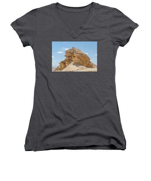 Frog Rock Women's V-Neck T-Shirt (Junior Cut) by Arik Baltinester