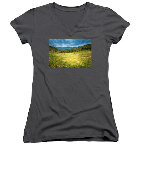From Winter To Spring Women's V-Neck T-Shirt (Junior Cut) by Stavros Argyropoulos