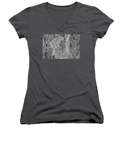 Women's V-Neck featuring the photograph Frost 2 by Antonio Romero