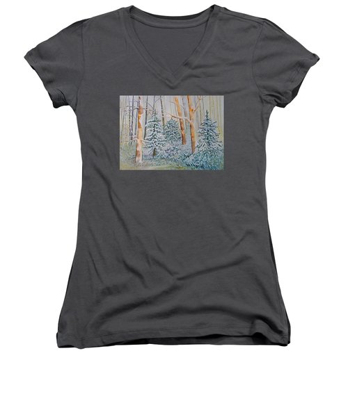 Winter Frost Women's V-Neck T-Shirt (Junior Cut) by Joanne Smoley