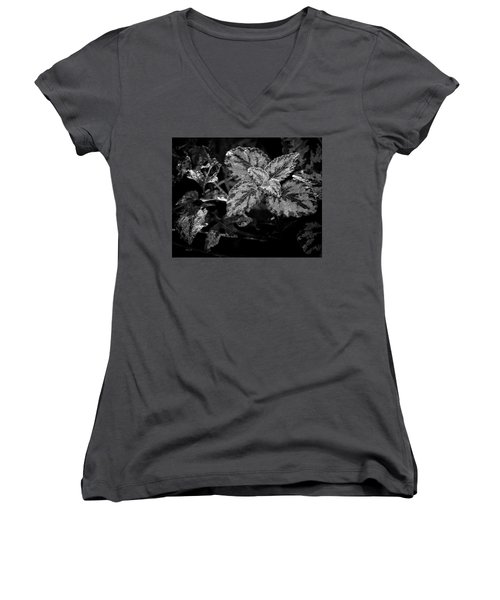 Frosted Hosta Women's V-Neck (Athletic Fit)