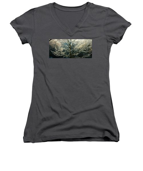 Frosted Trees Women's V-Neck
