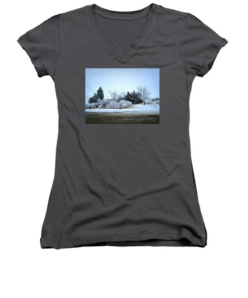 Frostie Women's V-Neck T-Shirt