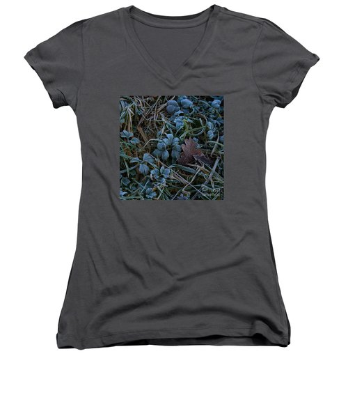 Frostings 4 Women's V-Neck