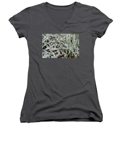 Women's V-Neck T-Shirt (Junior Cut) featuring the photograph Frosty Grass by Deborah Smolinske