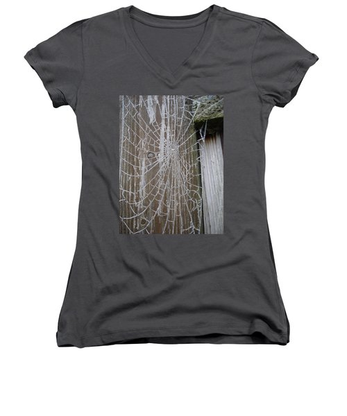 Frosty Web Women's V-Neck T-Shirt