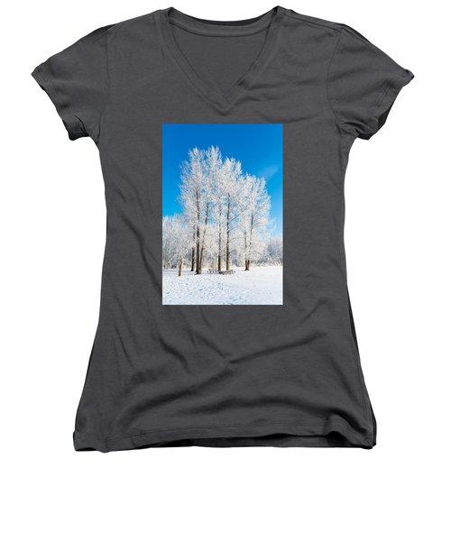 Frosty Wonderland Women's V-Neck T-Shirt