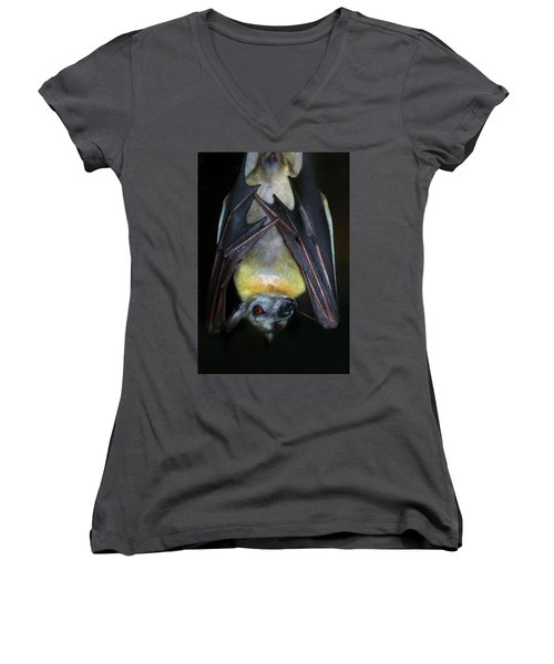Women's V-Neck T-Shirt (Junior Cut) featuring the photograph Fruit Bat by Anthony Jones