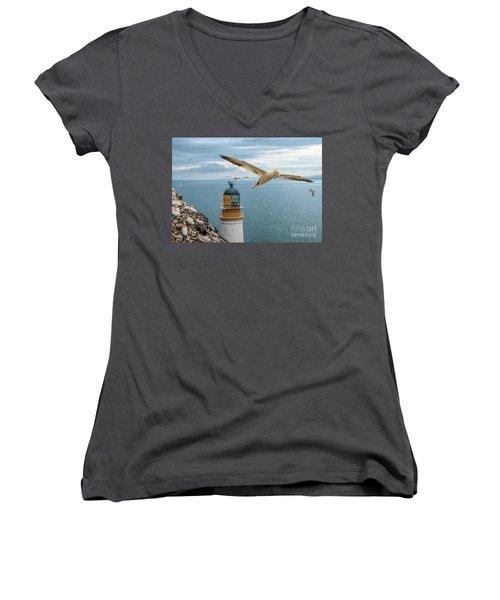 Gannets At Bass Rock Lighthouse Women's V-Neck
