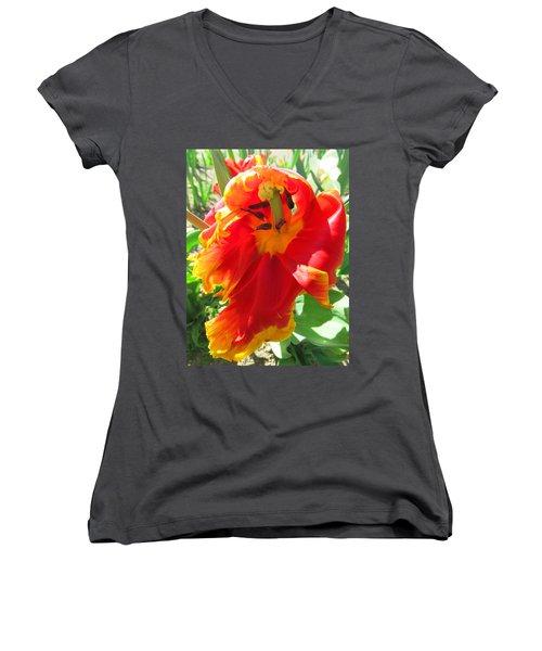 Garden Delight Women's V-Neck T-Shirt