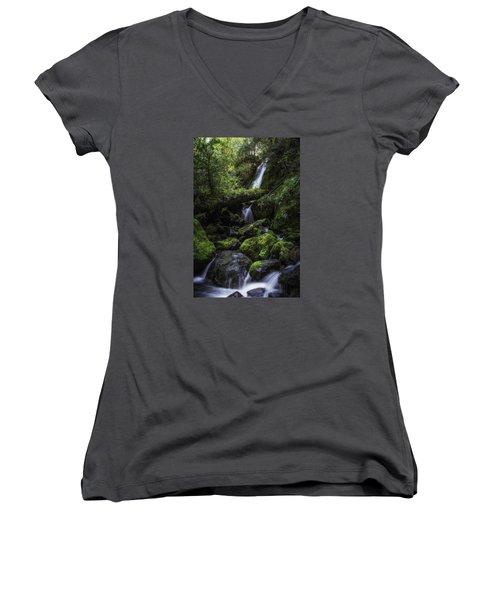 Gentle Cuts Women's V-Neck T-Shirt (Junior Cut) by James Heckt