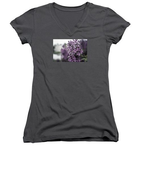 Gentle Spring Breeze Women's V-Neck T-Shirt (Junior Cut) by Miguel Winterpacht