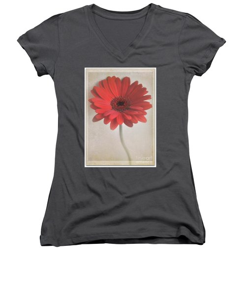 Women's V-Neck T-Shirt (Junior Cut) featuring the photograph Gerbera Daisy by Lyn Randle