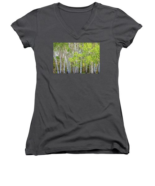 Getting Lost In The Wilderness Women's V-Neck T-Shirt (Junior Cut) by James BO Insogna