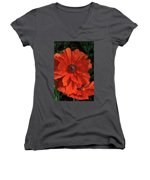 Giant Mountain Poppy Women's V-Neck